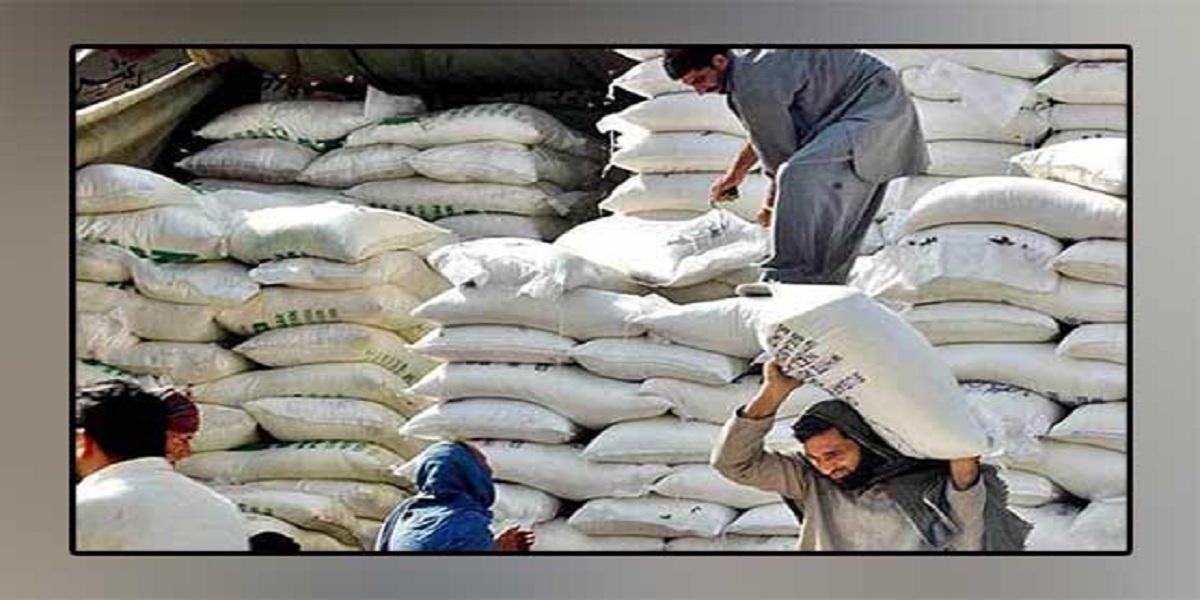 Flour - The News Today - TNT