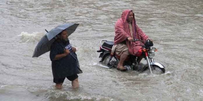 Rainfall - The News Today - TNT