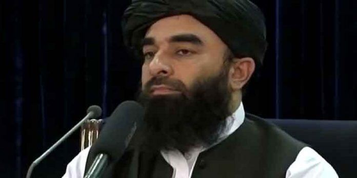 Zabihullah - The News Today - TNT
